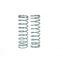 Springs 100mm length