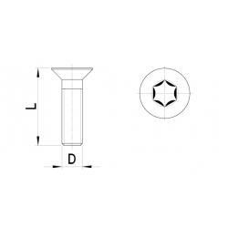 Countersunk bolt, Torx key (10 pcs)