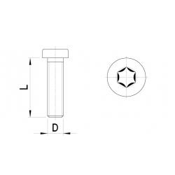 Low cylinder head, Torx (10pc)