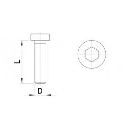 Cilinderkopbout laag, inbus (5st)