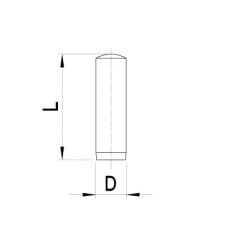 Cilindrische pennen (5 st)