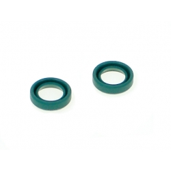 Oil seals for the dif (set)